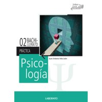 Psicología 2 Teoría bachillerato Laberinto