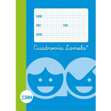 Recambio Lamela Tamaño Cuarto Cuadrovia 2.5mm 100 Hojas 08002