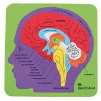 Puzzle goma eva El Cerebro