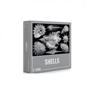 Puzzle Shells 1000 Piezas